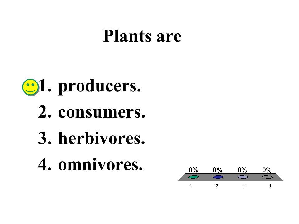 Plants are 1.producers. 2.consumers. 3.herbivores. 4.omnivores.