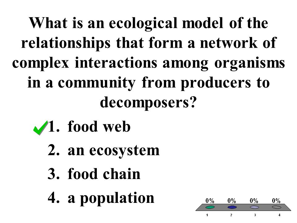 What is an ecological model of the relationships that form a network of complex interactions among organisms in a community from producers to decompos