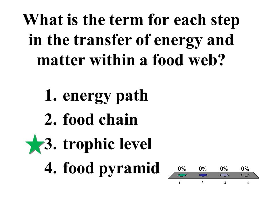 What is the term for each step in the transfer of energy and matter within a food web? 1.energy path 2.food chain 3.trophic level 4.food pyramid