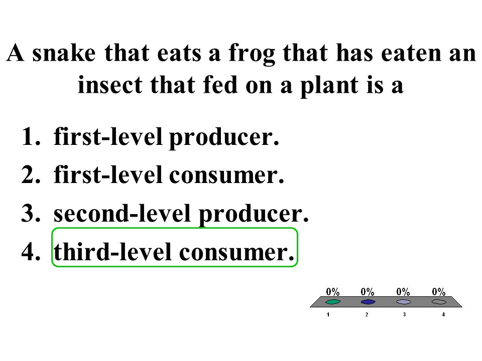 A snake that eats a frog that has eaten an insect that fed on a plant is a 1.first-level producer. 2.first-level consumer. 3.second-level producer. 4.