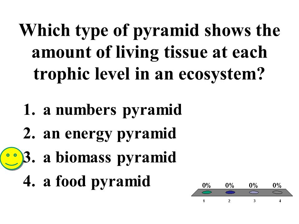 Which type of pyramid shows the amount of living tissue at each trophic level in an ecosystem? 1.a numbers pyramid 2.an energy pyramid 3.a biomass pyr