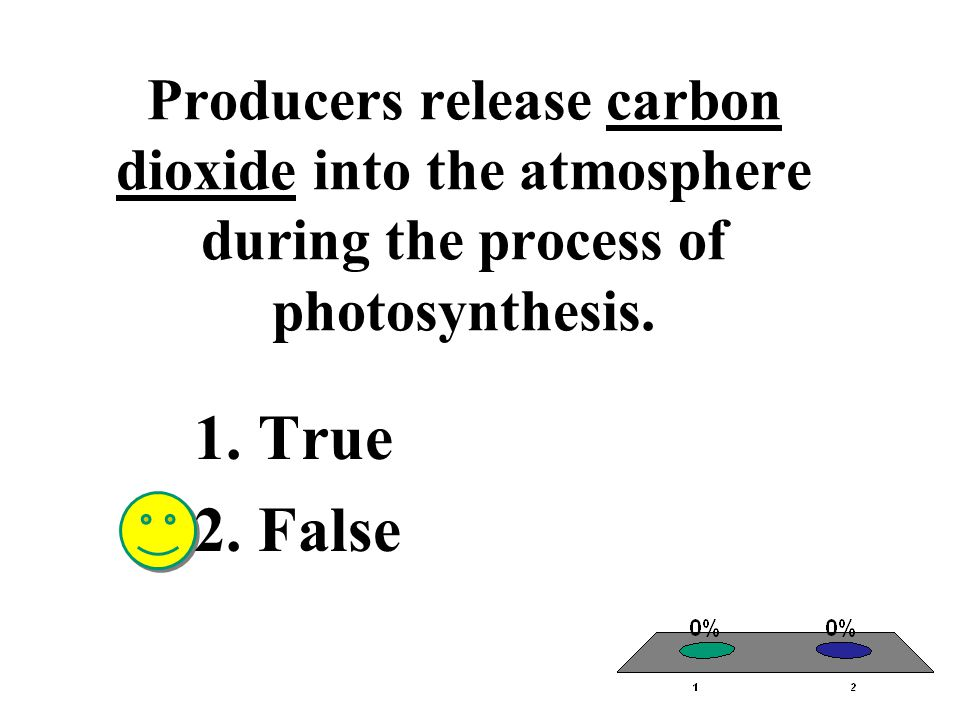 Producers release carbon dioxide into the atmosphere during the process of photosynthesis. 1.True 2.False