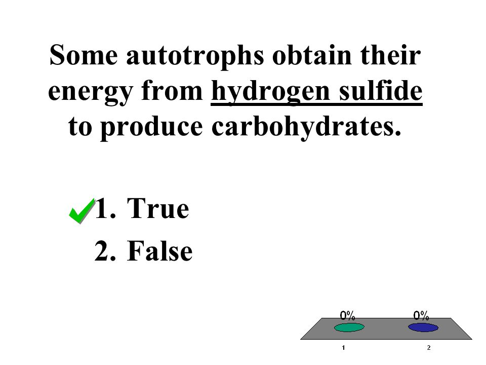 Some autotrophs obtain their energy from hydrogen sulfide to produce carbohydrates. 1.True 2.False