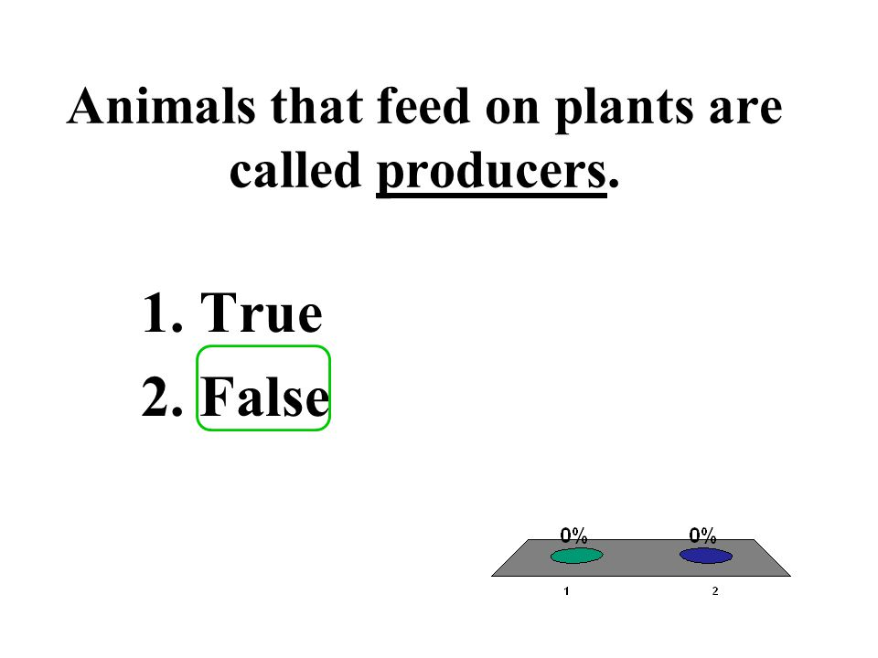Animals that feed on plants are called producers. 1.True 2.False