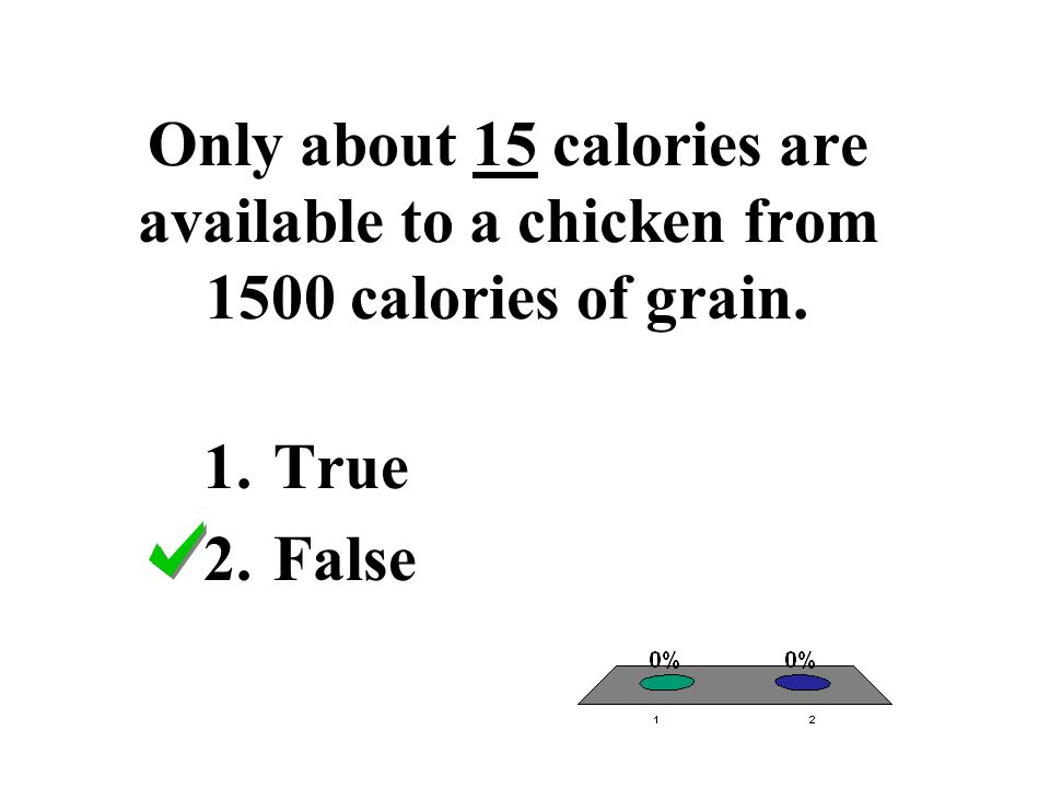 Only about 15 calories are available to a chicken from 1500 calories of grain. 1.True 2.False