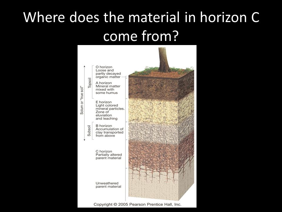 Where does the material in horizon C come from?