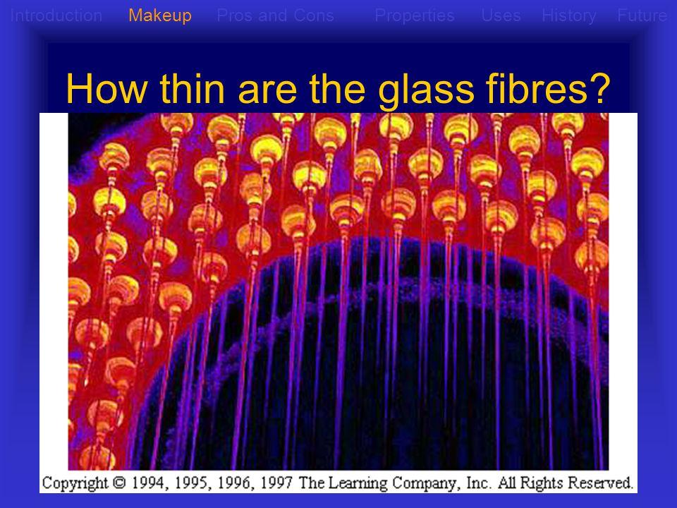 Going Deeper into Fibreglass Fibreglas s Glass Fibres Resi n Glass Fibres Introduction Makeup Pros and Cons Properties Uses History Future