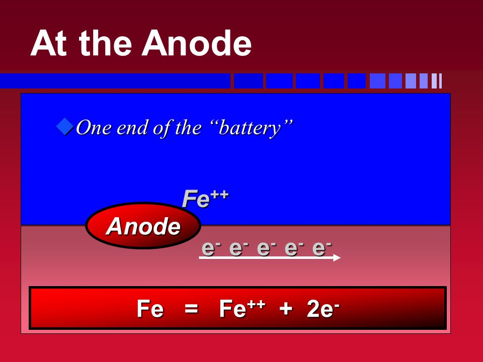 uOne end of the battery Anode Fe ++ e - e - e - e - e - Fe = Fe ++ + 2e - At the Anode