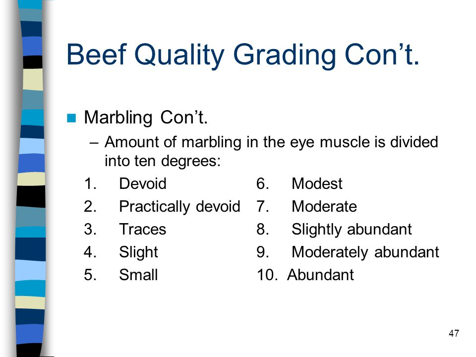 47 Beef Quality Grading Con't. Marbling Con't. –Amount of marbling in the eye muscle is divided into ten degrees: 1. Devoid6. Modest 2. Practically de