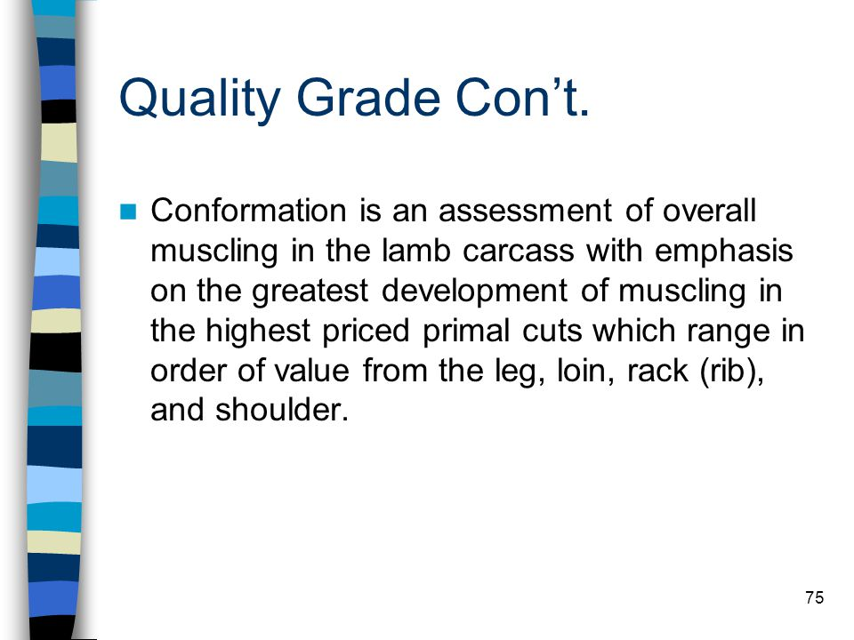 75 Quality Grade Con't. Conformation is an assessment of overall muscling in the lamb carcass with emphasis on the greatest development of muscling in