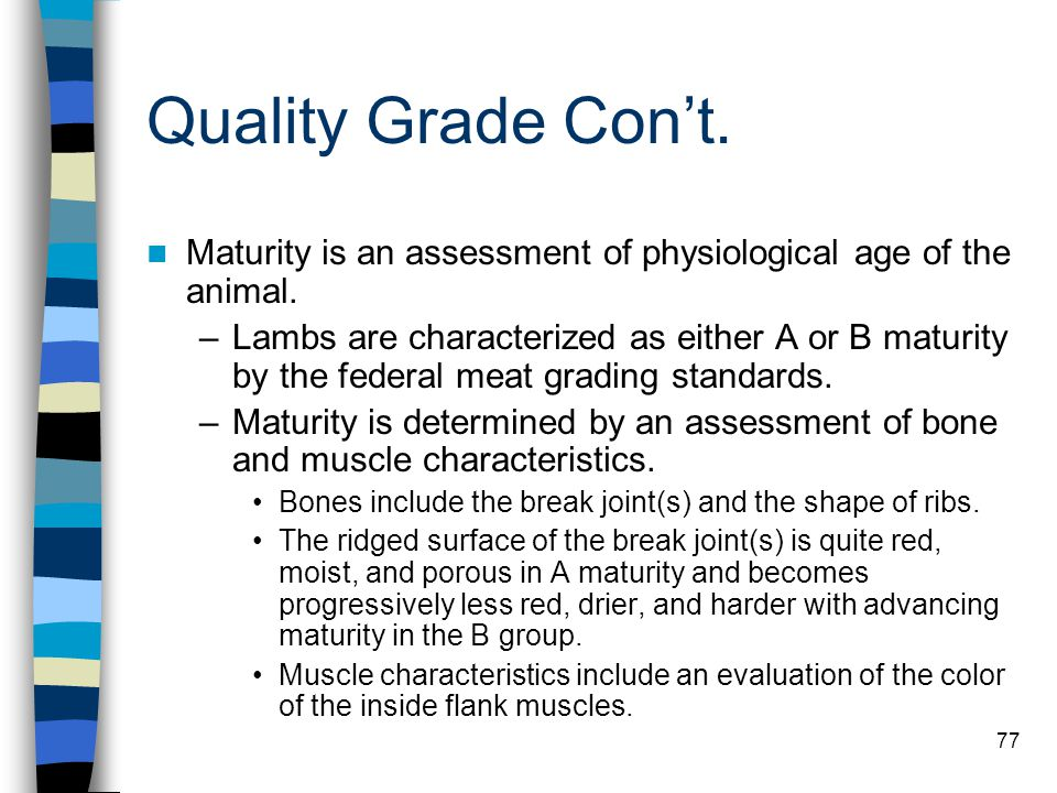 77 Quality Grade Con't. Maturity is an assessment of physiological age of the animal. –Lambs are characterized as either A or B maturity by the federa