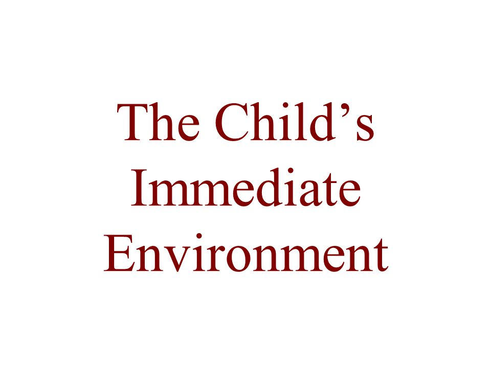 The Child's Immediate Environment