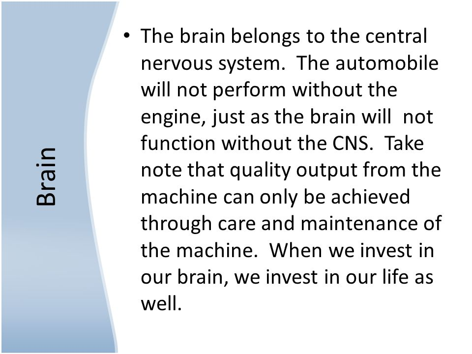 Brain The brain belongs to the central nervous system.