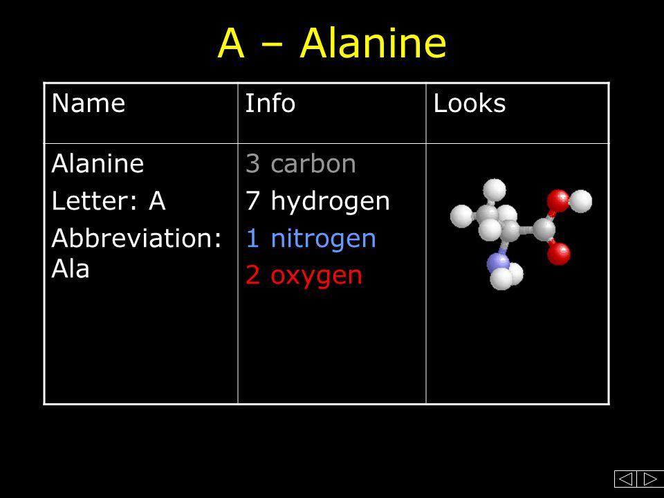 A – Alanine NameInfoLooks Alanine Letter: A Abbreviation: Ala 3 carbon 7 hydrogen 1 nitrogen 2 oxygen