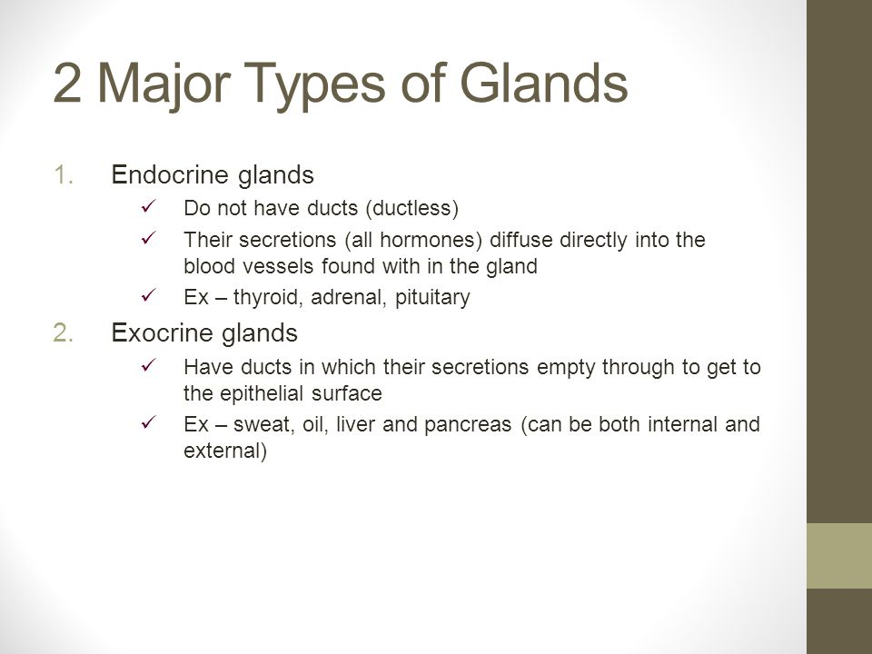 2 Major Types of Glands 1.Endocrine glands Do not have ducts (ductless) Their secretions (all hormones) diffuse directly into the blood vessels found with in the gland Ex – thyroid, adrenal, pituitary 2.Exocrine glands Have ducts in which their secretions empty through to get to the epithelial surface Ex – sweat, oil, liver and pancreas (can be both internal and external)