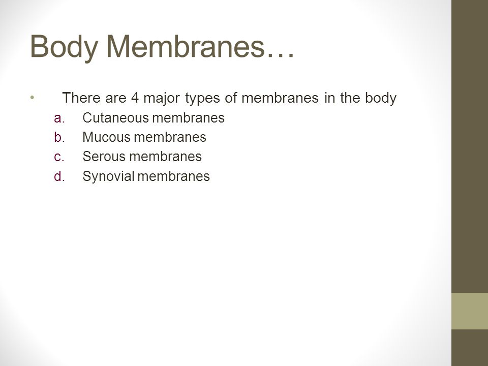 Body Membranes… There are 4 major types of membranes in the body a.Cutaneous membranes b.Mucous membranes c.Serous membranes d.Synovial membranes