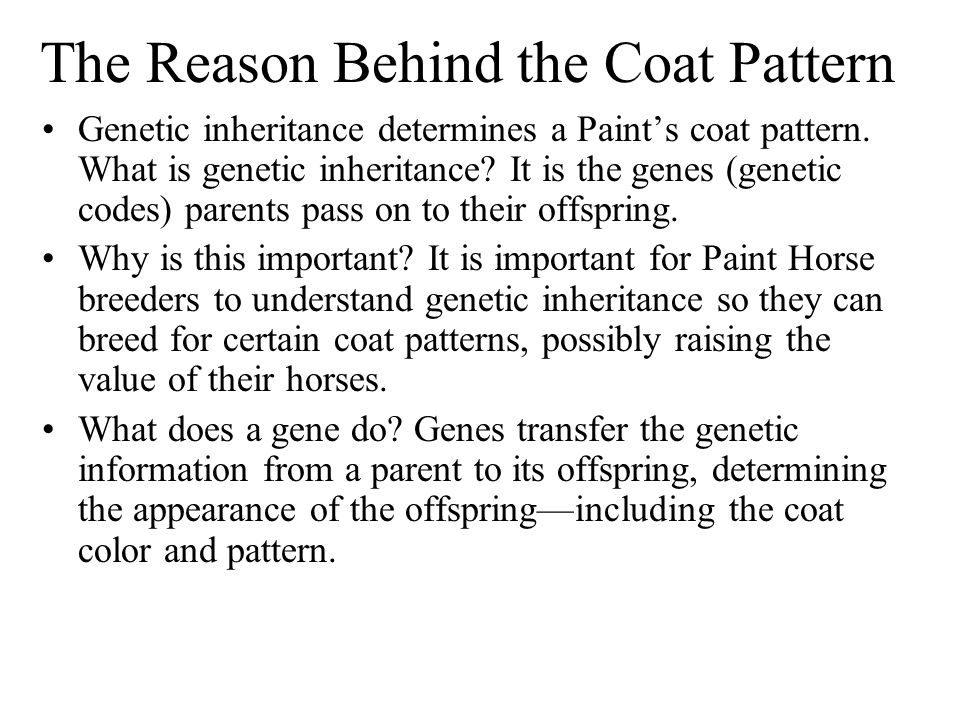 Coat color patterns are created by genes.