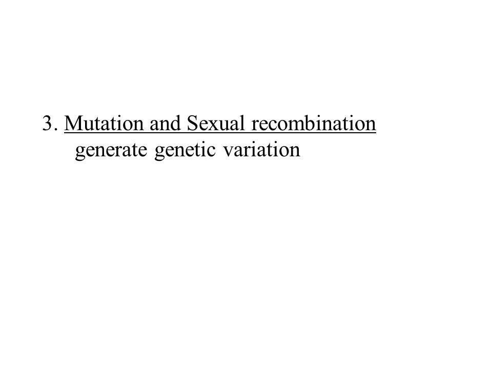 3. Mutation and Sexual recombination generate genetic variation