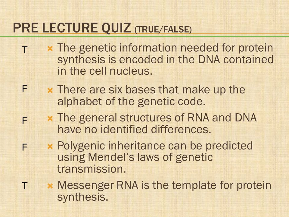PRE LECTURE QUIZ (TRUE/FALSE)  The genetic information needed for protein synthesis is encoded in the DNA contained in the cell nucleus.  There are