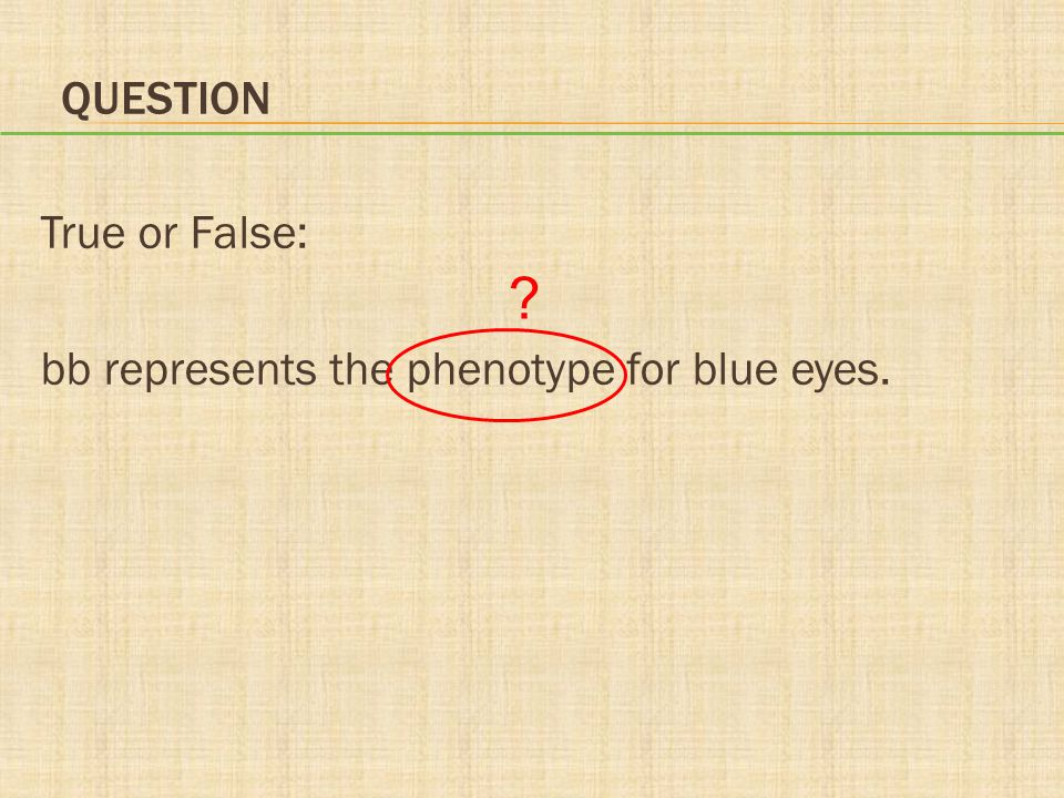 QUESTION True or False: bb represents the phenotype for blue eyes. ?