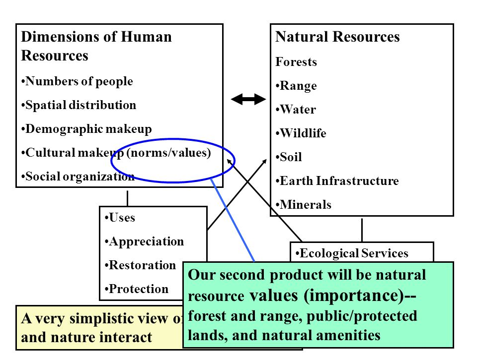 Dimensions of Human Resources Numbers of people Spatial distribution Demographic makeup Cultural makeup (norms/values) Social organization Natural Resources Forests Range Water Wildlife Soil Earth Infrastructure Minerals A very simplistic view of how humans and nature interact Uses Appreciation Restoration Protection Ecological Services Our second product will be natural resource values (importance)-- forest and range, public/protected lands, and natural amenities