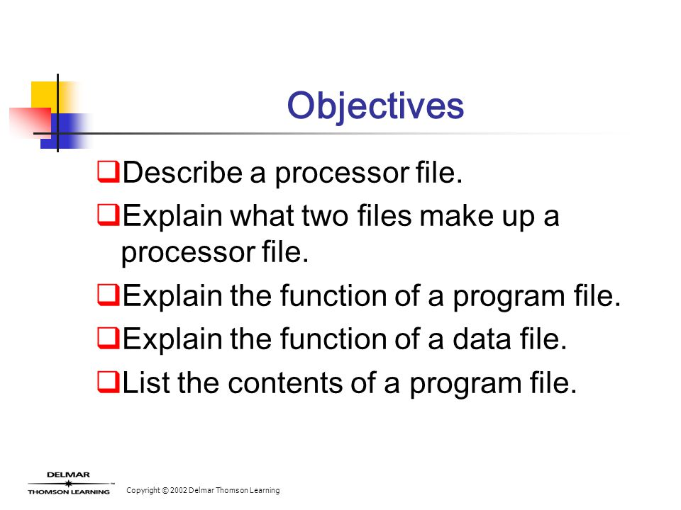 Copyright © 2002 Delmar Thomson Learning Objectives  Describe a processor file.  Explain what two files make up a processor file.  Explain the func