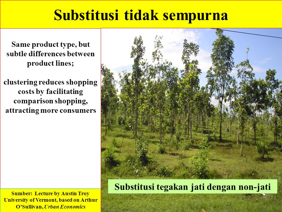 Substitusi tidak sempurna Same product type, but subtle differences between product lines; clustering reduces shopping costs by facilitating compariso
