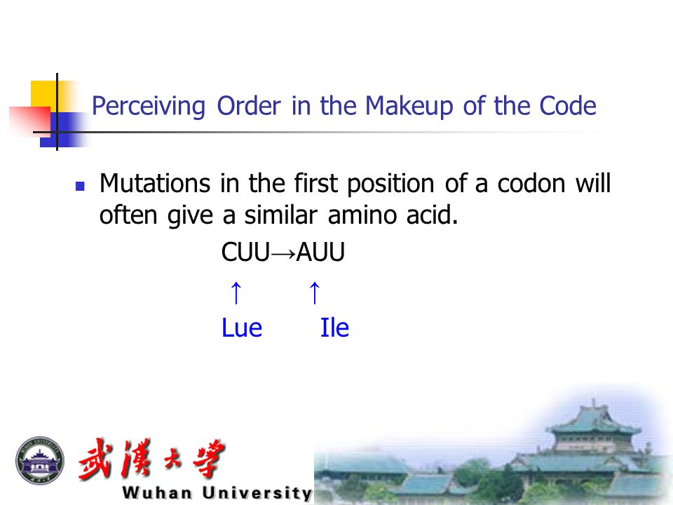 Perceiving Order in the Makeup of the Code Mutations in the first position of a codon will often give a similar amino acid.