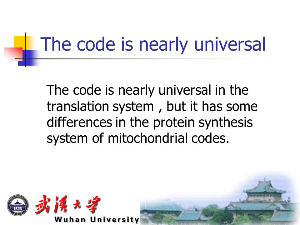 The code is nearly universal The code is nearly universal in the translation system, but it has some differences in the protein synthesis system of mitochondrial codes.