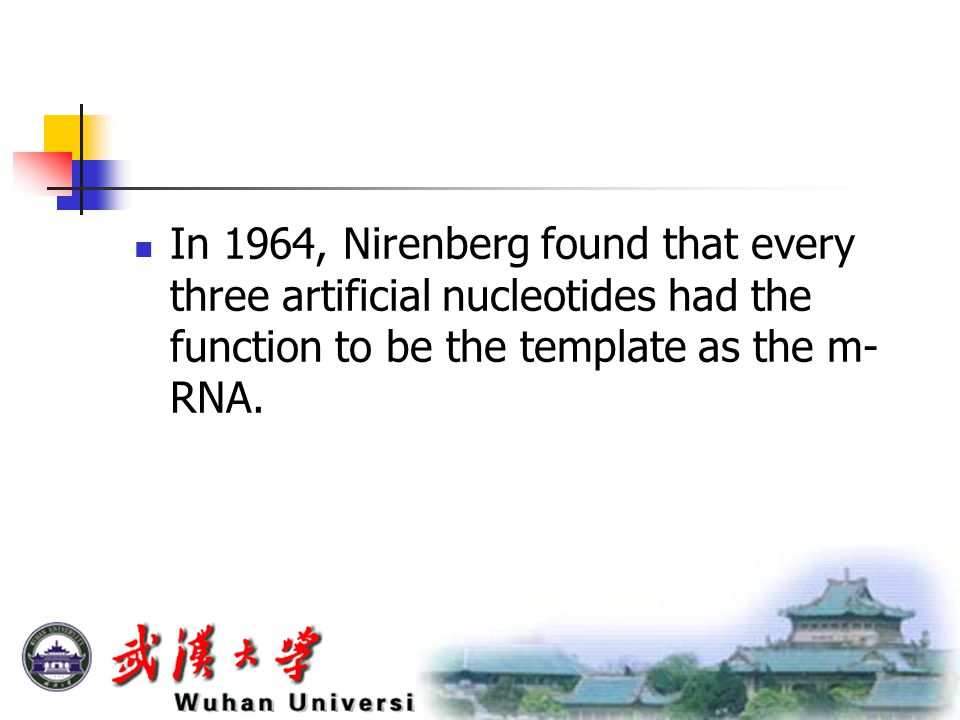 In 1964, Nirenberg found that every three artificial nucleotides had the function to be the template as the m- RNA.