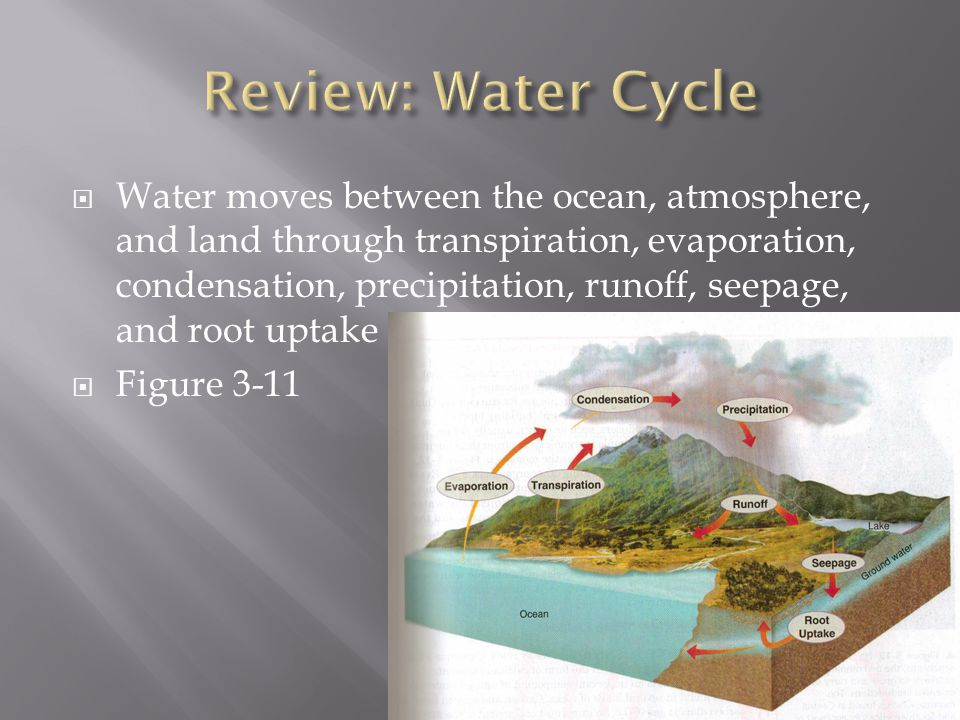 Water moves between the ocean, atmosphere, and land through transpiration, evaporation, condensation, precipitation, runoff, seepage, and root uptake  Figure 3-11