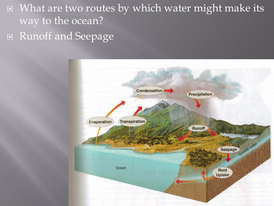  What are two routes by which water might make its way to the ocean?  Runoff and Seepage