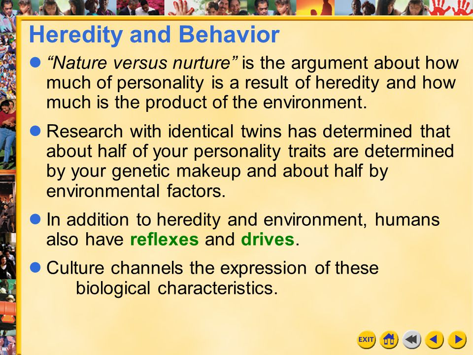 """4 Chapter 6 Heredity and Behavior """"Nature versus nurture"""" is the argument about how much of personality is a result of heredity and how much is the pr"""