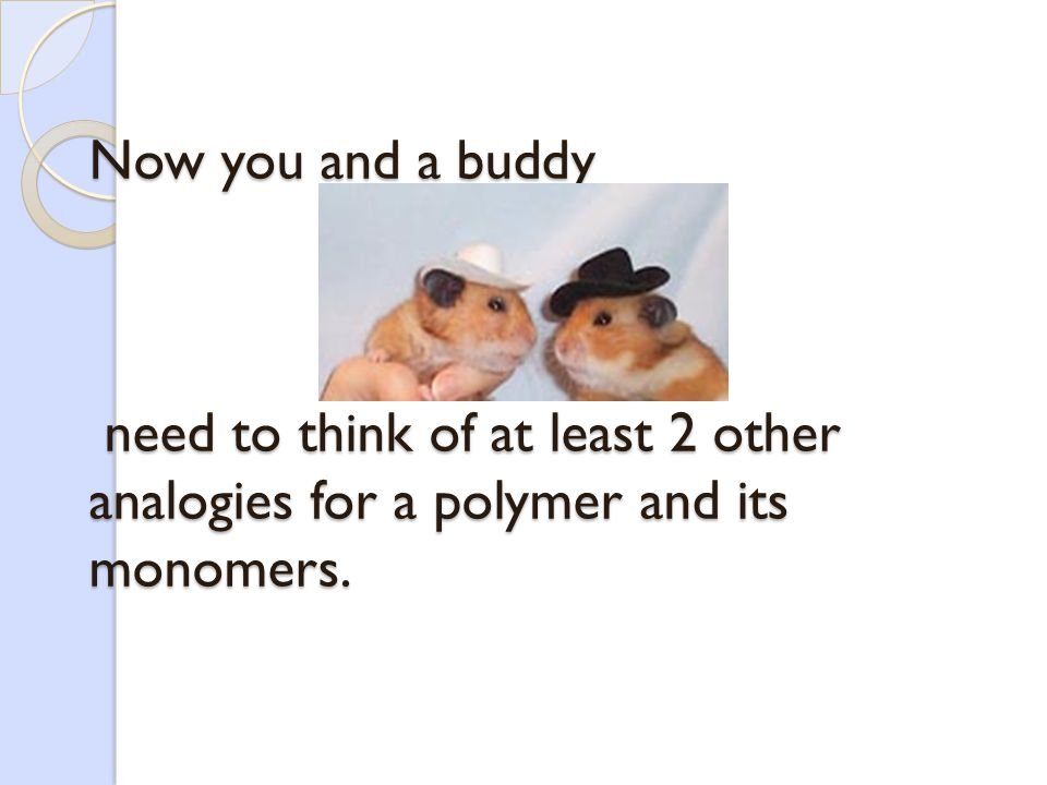 A Polymer Here are some analogies to better understand what polymers and monomers are…. EXAMPLE of POLYMER MONOMER A TRAINTHE CARS A NECKLACEEACH PEAR
