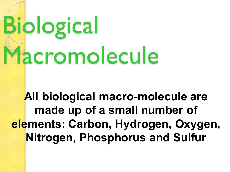 Molecules of Life Put C, H, O, P, and N together in different ways to build living organisms What are bodies made of.