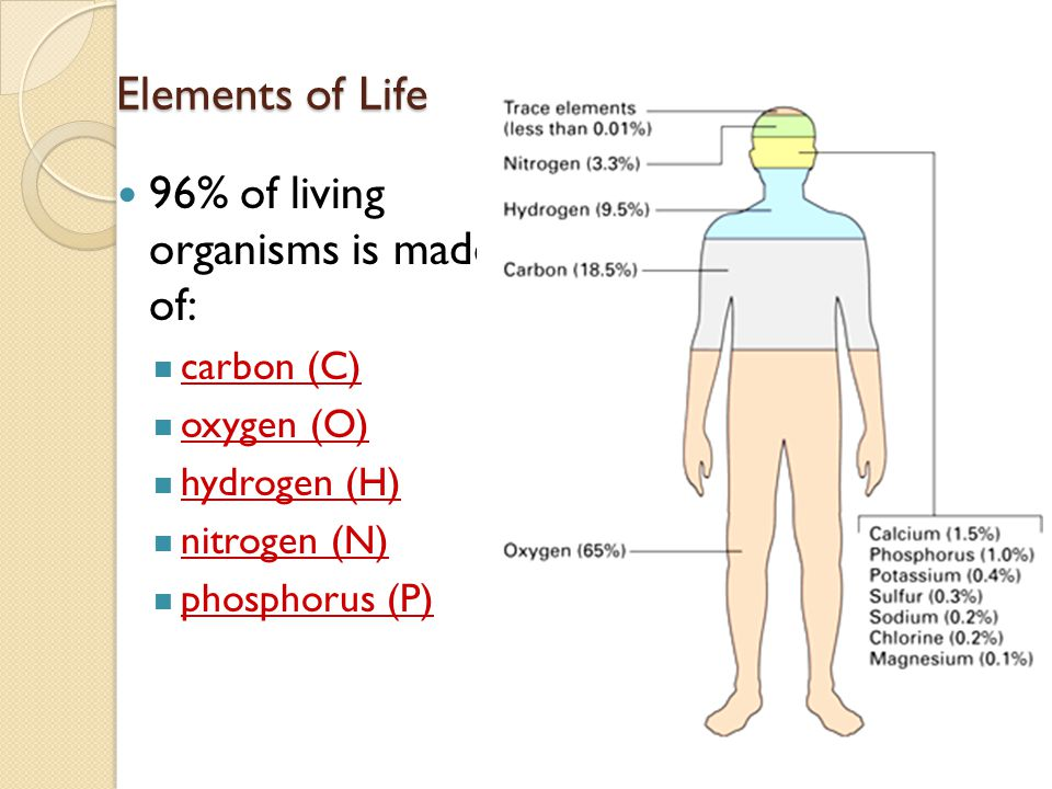 Biological Macromolecule All biological macro-molecule are made up of a small number of elements: Carbon, Hydrogen, Oxygen, Nitrogen, Phosphorus and S