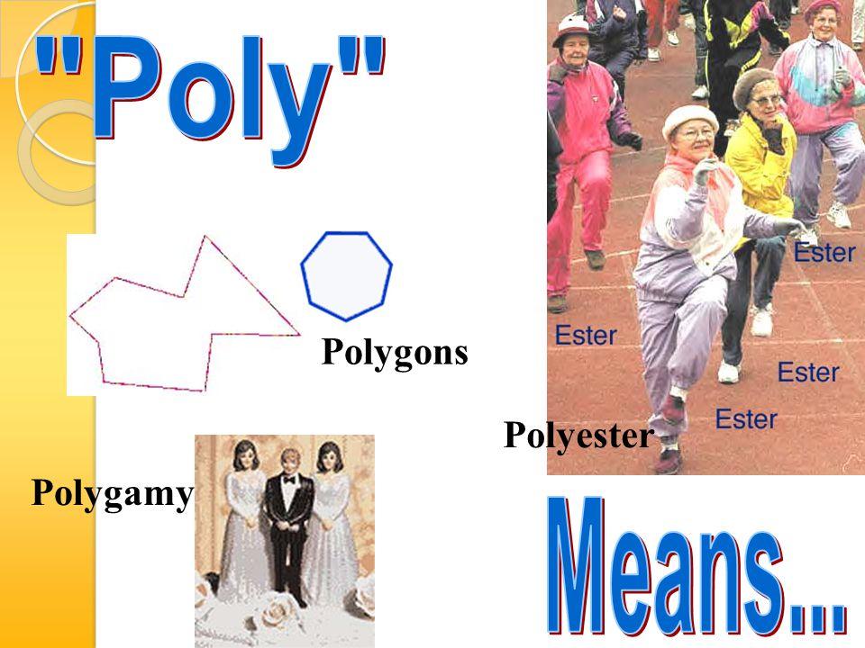 Polygons Polygamy Polyester