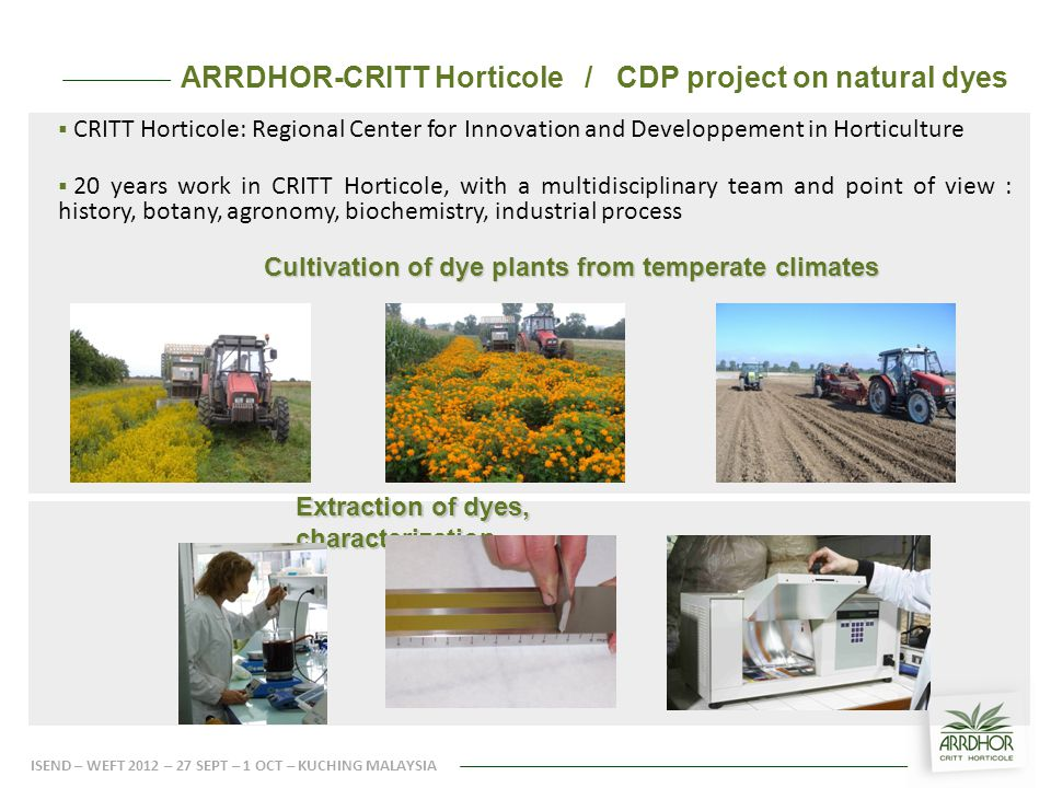 ARRDHOR-CRITT Horticole / CDP project on natural dyes  CRITT Horticole: Regional Center for Innovation and Developpement in Horticulture  20 years work in CRITT Horticole, with a multidisciplinary team and point of view : history, botany, agronomy, biochemistry, industrial process Cultivation of dye plants from temperate climates ISEND – WEFT 2012 – 27 SEPT – 1 OCT – KUCHING MALAYSIA Extraction of dyes, characterization