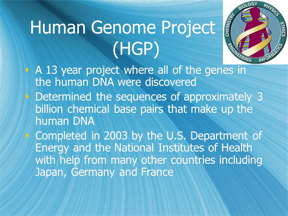 Human Genome Project (HGP)  A 13 year project where all of the genes in the human DNA were discovered  Determined the sequences of approximately 3 b