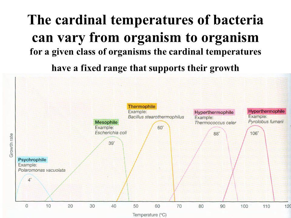 Temperature classes of microbes Mesophiles: midrange temperature optima circa 39 o C (example: E.
