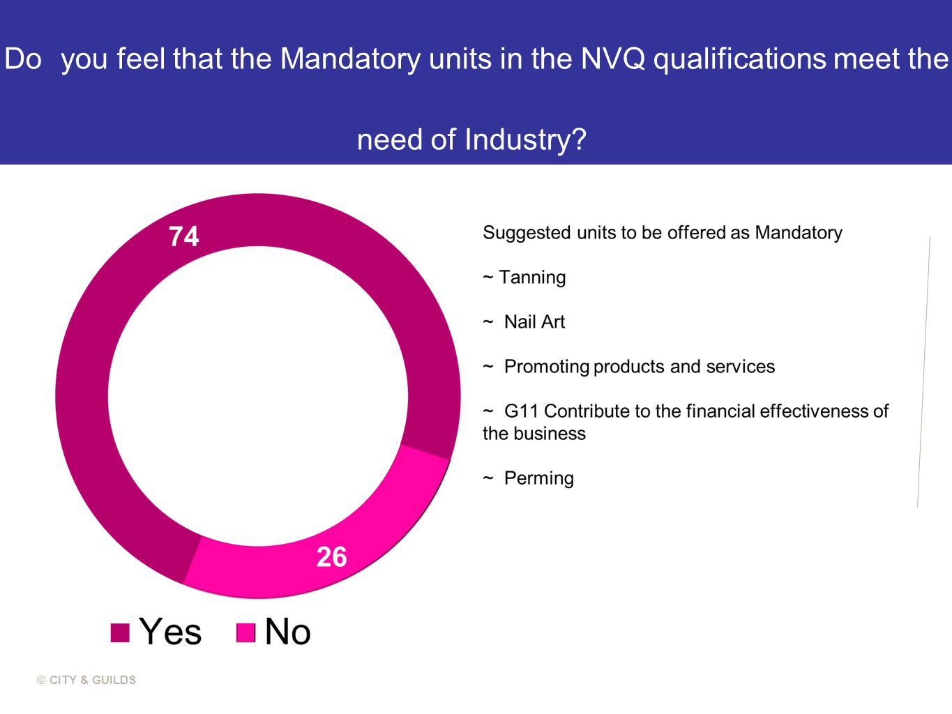 Do you feel that the Mandatory units in the NVQ qualifications meet the need of Industry.