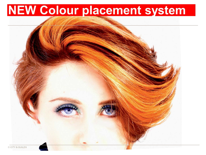 © CITY & GUILDS NEW Colour placement system