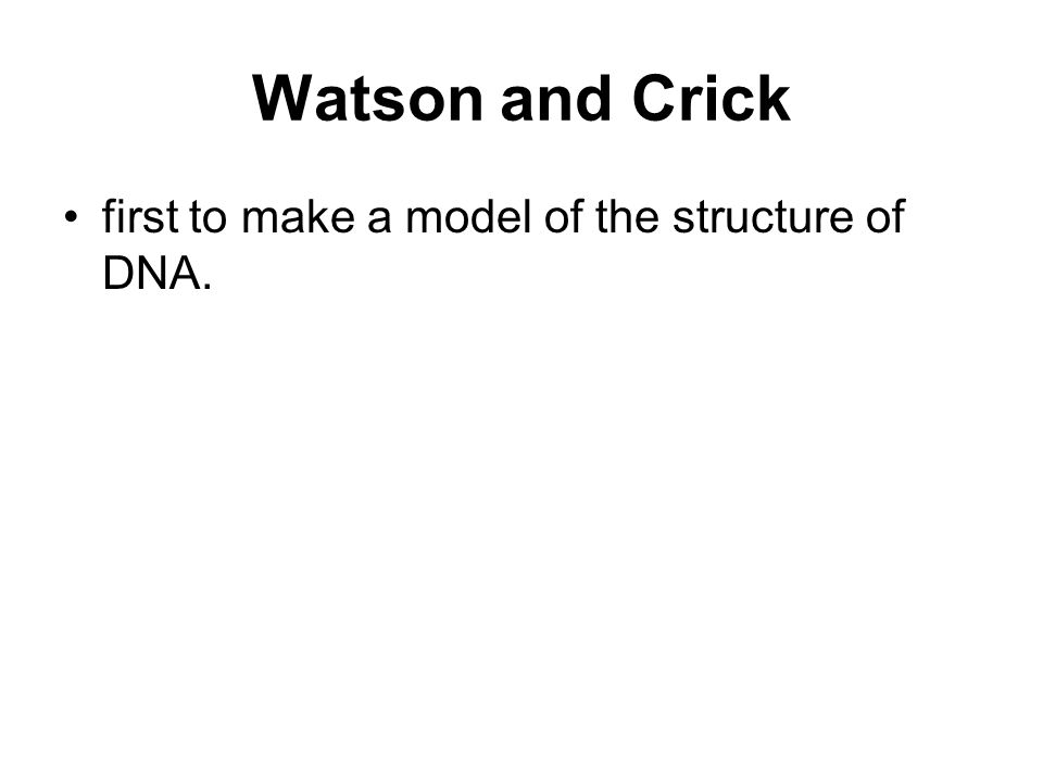 Watson and Crick first to make a model of the structure of DNA.