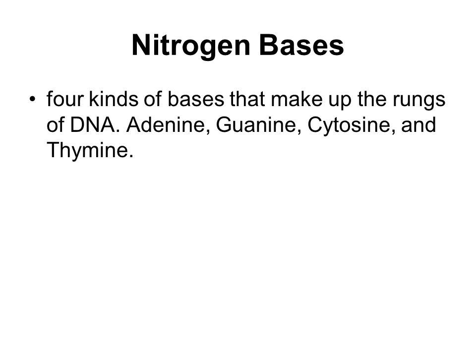 Nitrogen Bases four kinds of bases that make up the rungs of DNA.