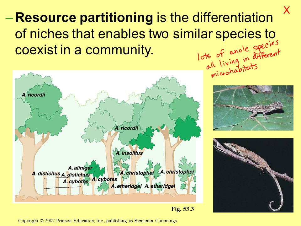 –Resource partitioning is the differentiation of niches that enables two similar species to coexist in a community.