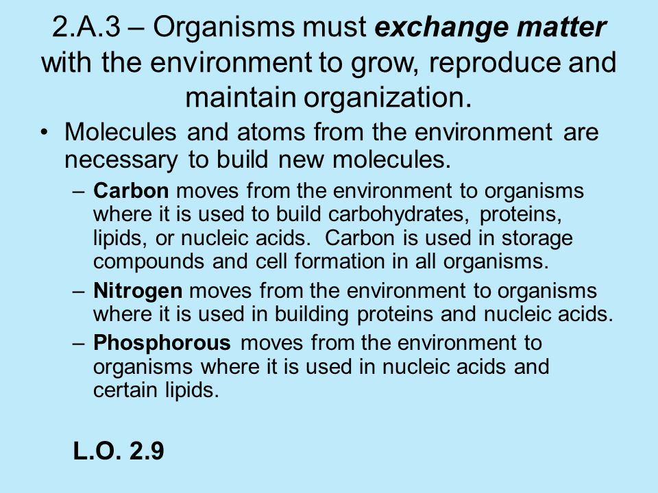 2.A.3 – Organisms must exchange matter with the environment to grow, reproduce and maintain organization.