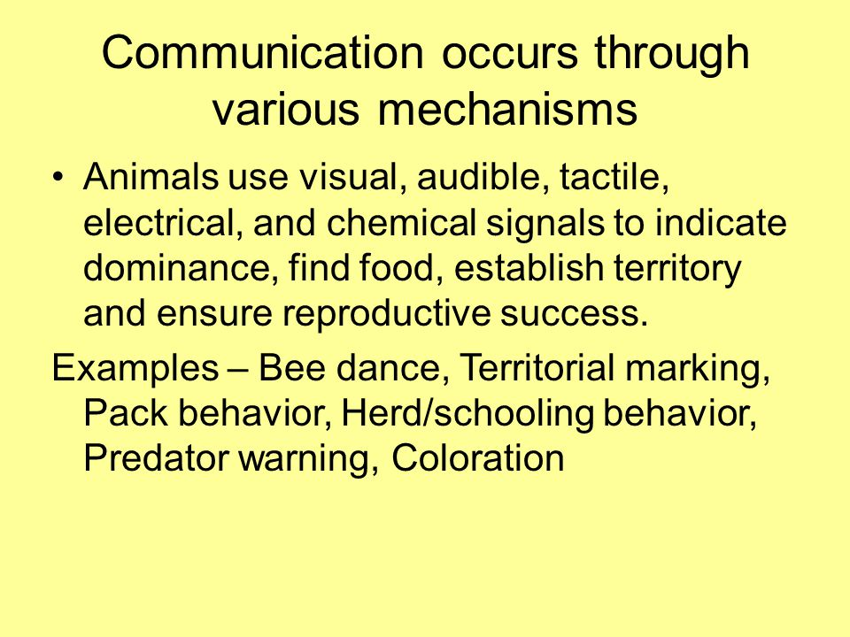 Communication occurs through various mechanisms Animals use visual, audible, tactile, electrical, and chemical signals to indicate dominance, find food, establish territory and ensure reproductive success.