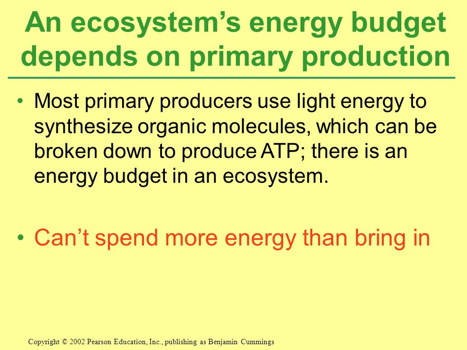 Most primary producers use light energy to synthesize organic molecules, which can be broken down to produce ATP; there is an energy budget in an ecosystem.