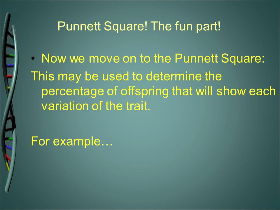 Punnett Square! The fun part! Now we move on to the Punnett Square: This may be used to determine the percentage of offspring that will show each vari