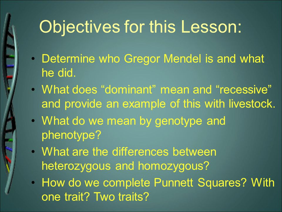 """Objectives for this Lesson: Determine who Gregor Mendel is and what he did. What does """"dominant"""" mean and """"recessive"""" and provide an example of this w"""